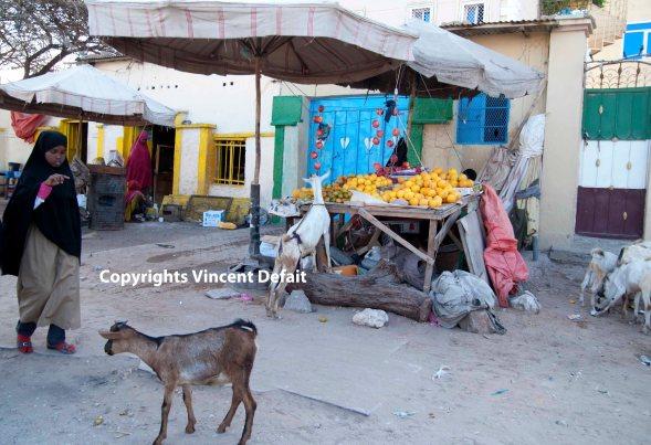 VD Hargeisa street copy 2